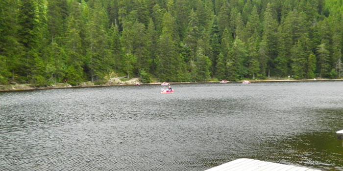 lago-mummelsee-don-viajon-alemania-bosques