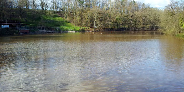 maulbronn-naturaleza-lagos-alemania