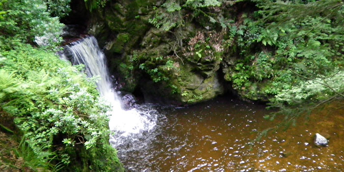 mummelsee-don-viajon-belleza-selva-negra-alemania