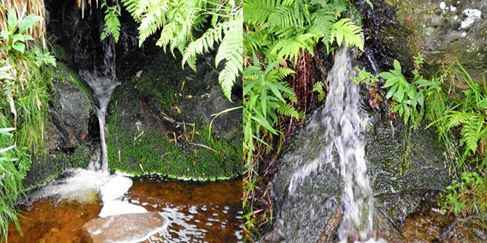 mummelsee-don-viajon-cascadas-alemania