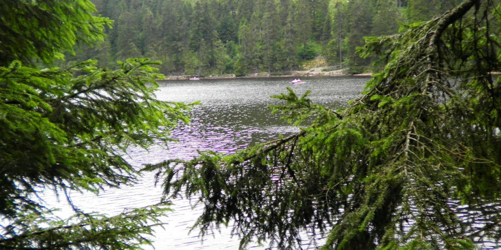 mummelsee-naturaleza-don-viajon-alemania