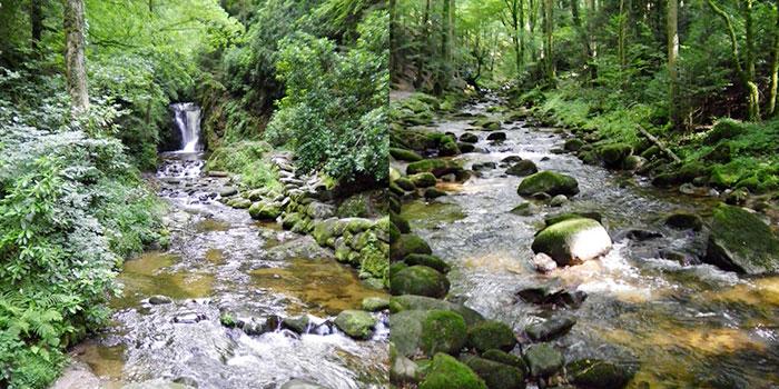 mummelsee-rios-montañismo-donviajon-alemania