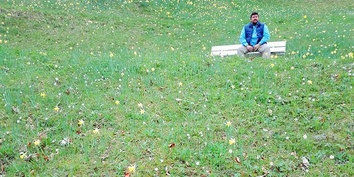 primavera-flores-silvestres-alemania
