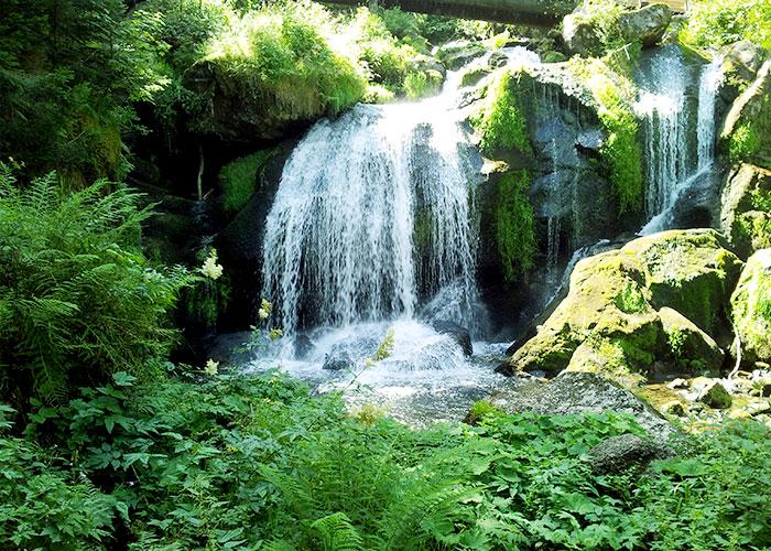 selva-negra-alemania-cascadas-triberg