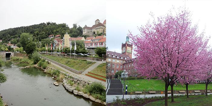 selva-negra-alemania-rutas-primavera