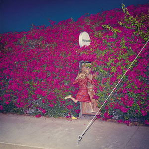 album-nuevo-feist-pleasure