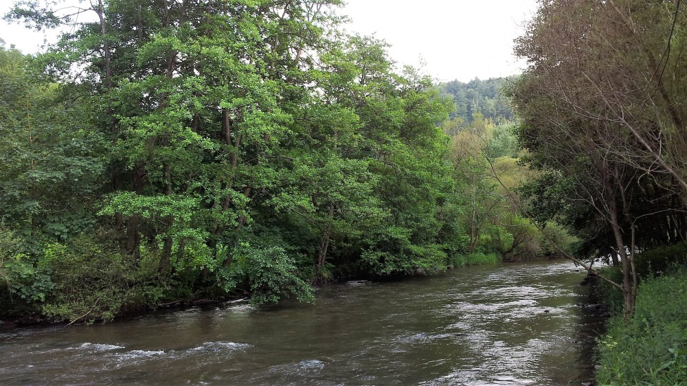 nordschwarzwaldtag-donviajon-selva-negra-alemania-turismo