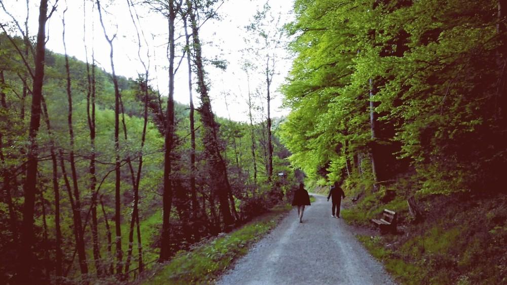 Baden-Wurttemberg-naturaleza-don-viajon-viajes-alemania