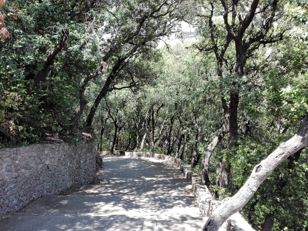 Montserrat-rutas-senderismo-don-viajon-naturaleza-catalunya
