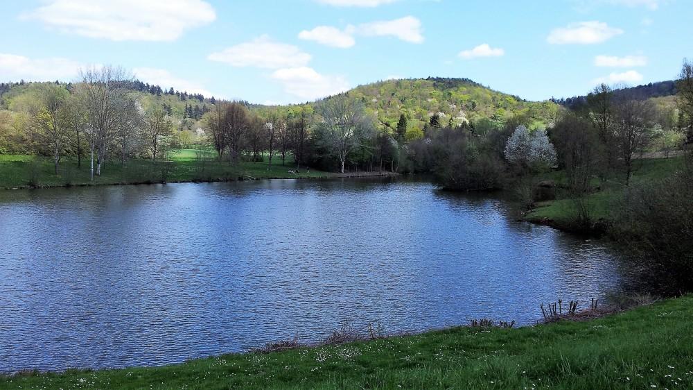 Baden-Wurttemberg-naturaleza-don-viajon-eventos-culturales-alemania