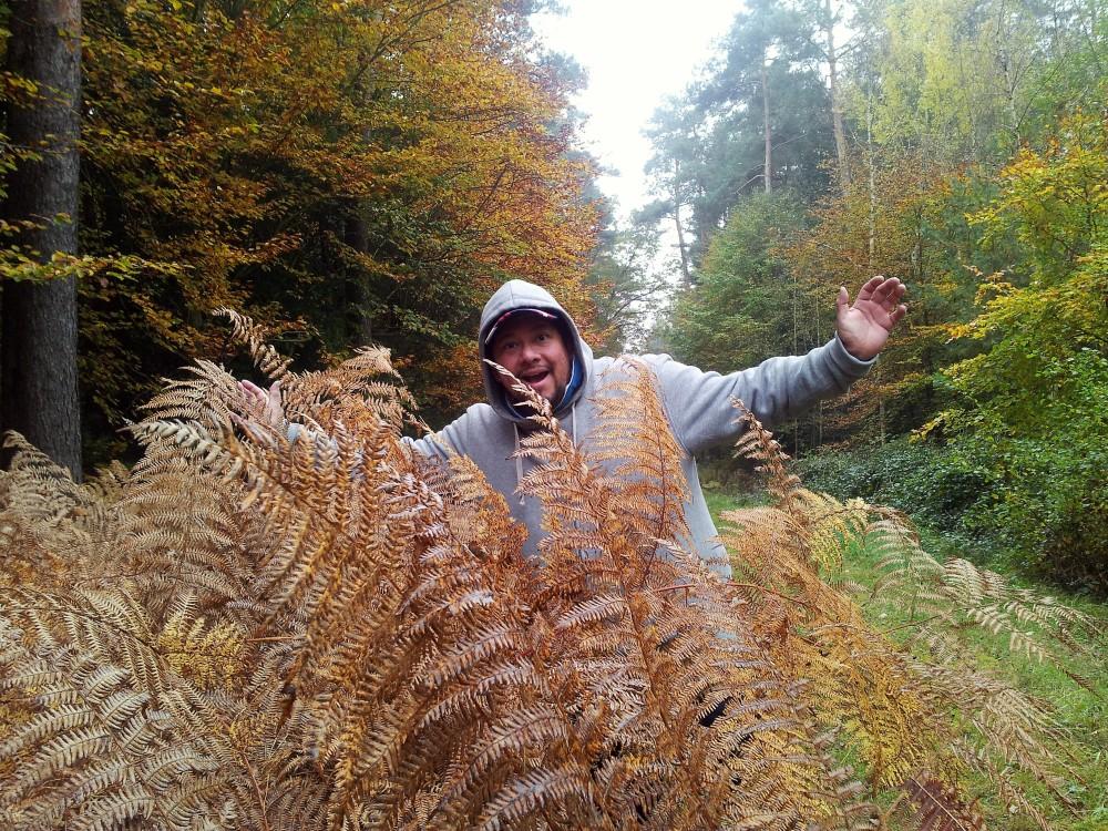 bosques-donviajon-otono-herbst-naturaleza-kandell-alemania