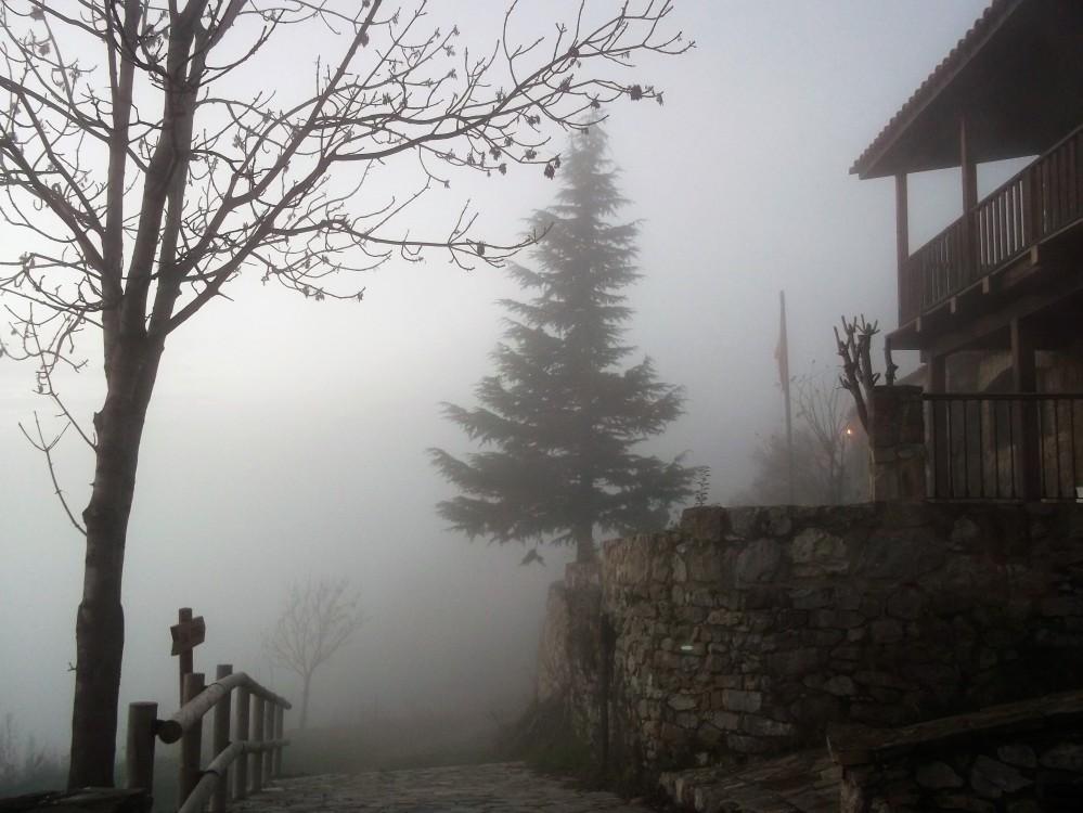 niebla-donviajon-naturaleza-otono-alemania-colores