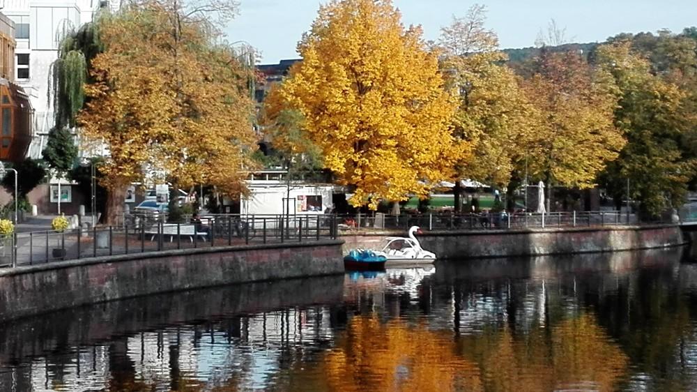el-otono-fascinantes-colores-donviajon-festivales-baden-wurttemberg-alemania
