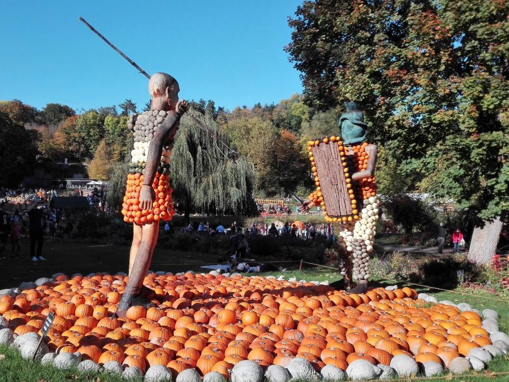 festival-de-la-calabaza-donviajon-kurbisausstellung-ludwigsburg-diversion-alemania