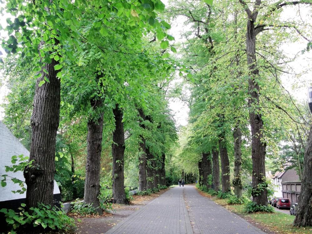 Brujas-paseo-por-la-naturaleza-donviajon-belleza-diversion-belgica