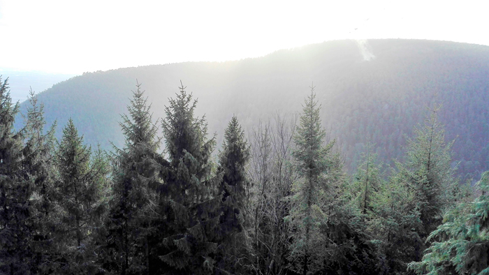 el-monte-de-santa-odilia-donviajon-vosgos-turismo-senderismo-naturaleza-alsacia-francia
