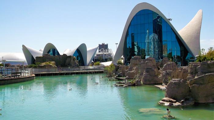 Oceanografico-de-Valencia-donviajon-turismo-sostenible-naturaleza-aventura-cultura-valencia-espana