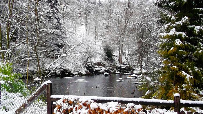 Invierno-paisajes-bonitos-nevados-donviajon-turismo-aventura-naturaleza-alemania