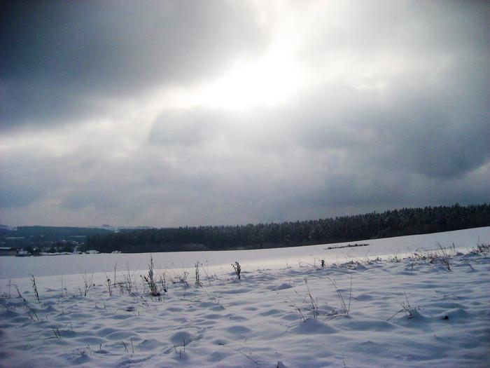 Invierno-paisajes-nevados-hermosos-donviajon-viajando-con-pasion-turismo-francia
