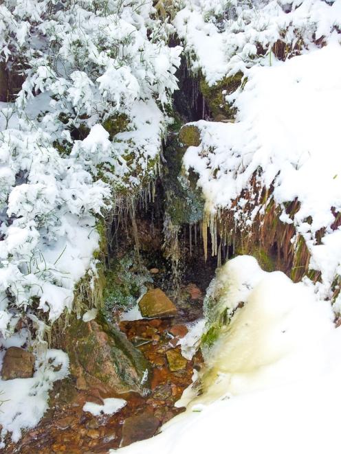 Kaltenbronn-Gernsbach-don-viajon-turismo-de-invierno-naturaleza-en-la-Selva-Negra-Alemania
