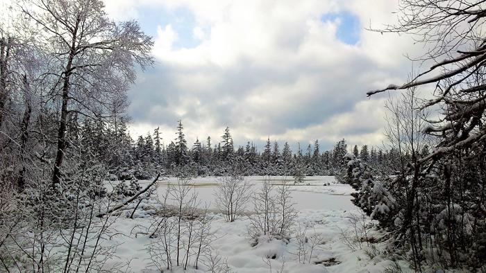 Kaltenbronn-Gernsbach-donviajon-turismo-de-invierno-naturaleza-senderismo-Selva-Negra-Alemania