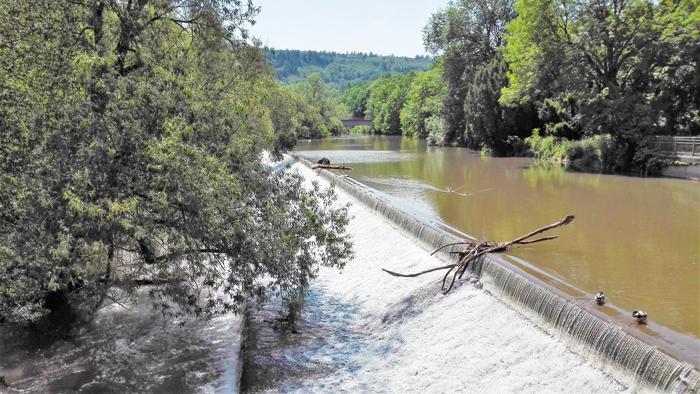Pforzheim-rio-Nagold-donviajon-aventura-naturaleza-bosques-hayales-turismo-Selva-Negra-Alemania
