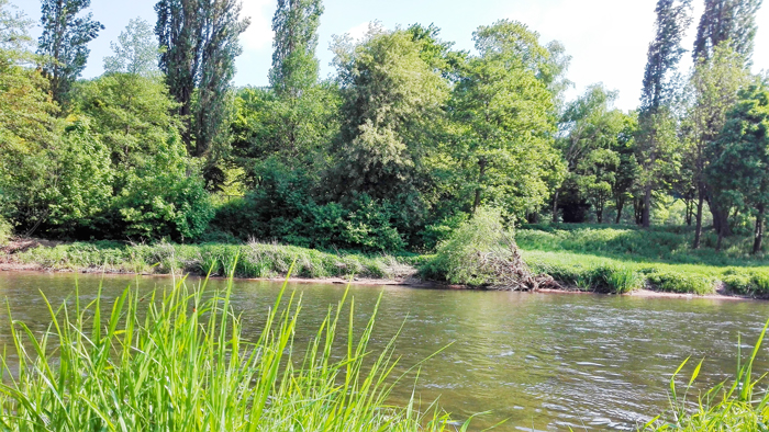 Pforzhiem-rio-Wuerm-donviajon-naturaleza-bosques-turismo-aventura-en-la-Selva-Negra-Alemania