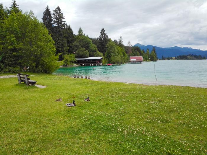 Walchensee-don-viajon-viajando-con-pasion-turismo-naturaleza-lagos-alta-Baviera-Alemania