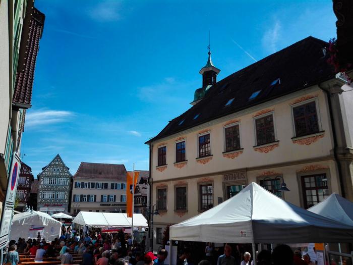 Vaihingen-an-der-Enz-donviajon-festivales-de-otono-turismo-cultural-gastronomico-Baden-Wurttemberg-Alemania