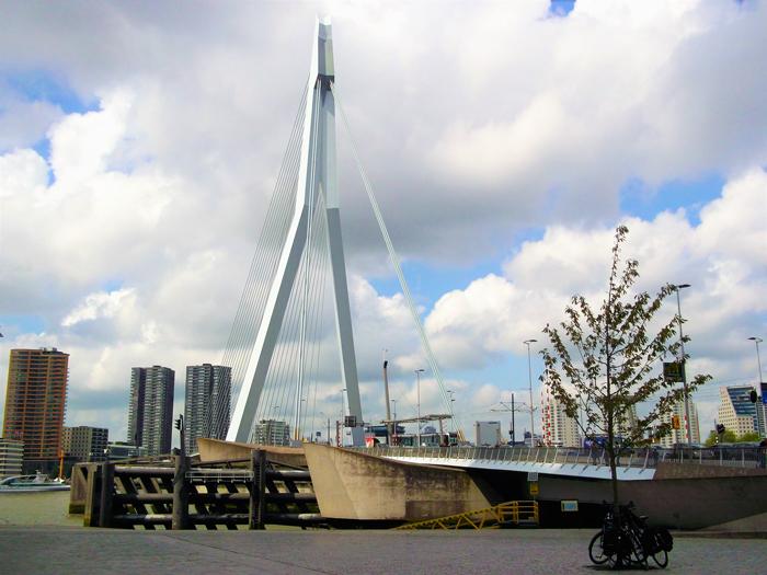Puente-Erasmus-don-viajon-turismo-aventura-rio-maas-Roterdam-Paises-Bajos