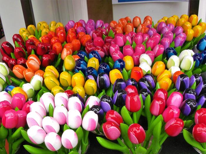 Tulipanes-flores-tipicas-holandesas-don-viajon-turismo-cultural-compras-Utrecht-Paises-Bajos