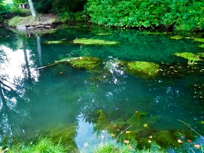 Buechenbronn-quelle-don-viajon-turismo-aventura-senderismo-Selva-Negra-Pforzheim-Baden-Wurttemberg-Alemania