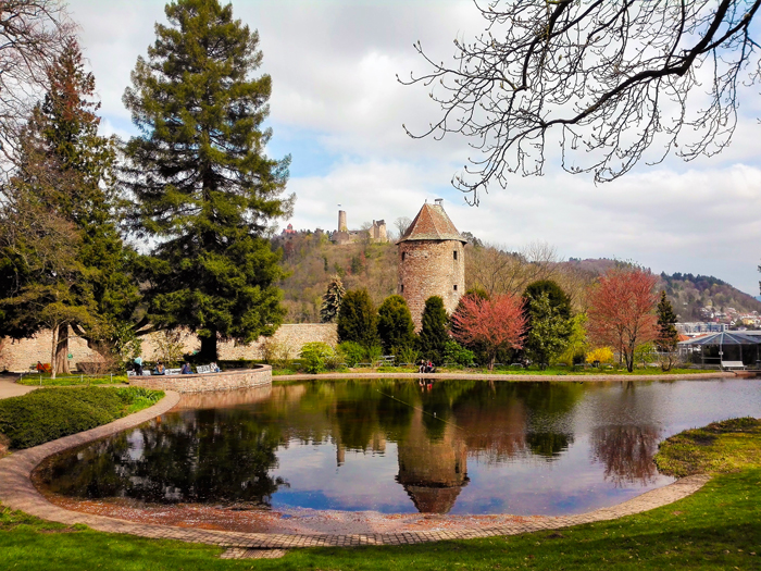 Weinheim-la-tierra-del-vino-don-viajon-turismo-cultural-gastronomico-region-Rin-Neckar-Baden-Wurttemberg-Alemania