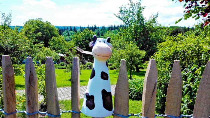 la-vaca-de-paseo-don-viajon-turismo-rural-senderismo-por-el-campo-aventura-Selva-Negra-Baden-Wurttemberg-Alemania