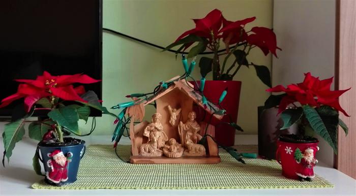 Belen-pesebre-tradiciones-cristianas-Navidad-don-viajon-turismo-urbano-cultural-gastronomico-Pforzheim-Baden-Wurttemberg-Alemania