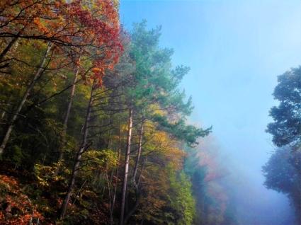 el-castillo-haut-koenigsbourg-don-viajon-turismo-aventura-recreativa-niebla-Alsacia-Bajo-Rin-Francia