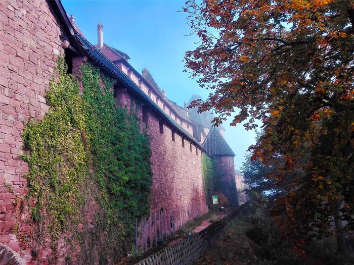 el-castillo-haut-koenigsbourg-don-viajon-turismo-ruta-del-vino-Alsacia-Gran-Este-Francia