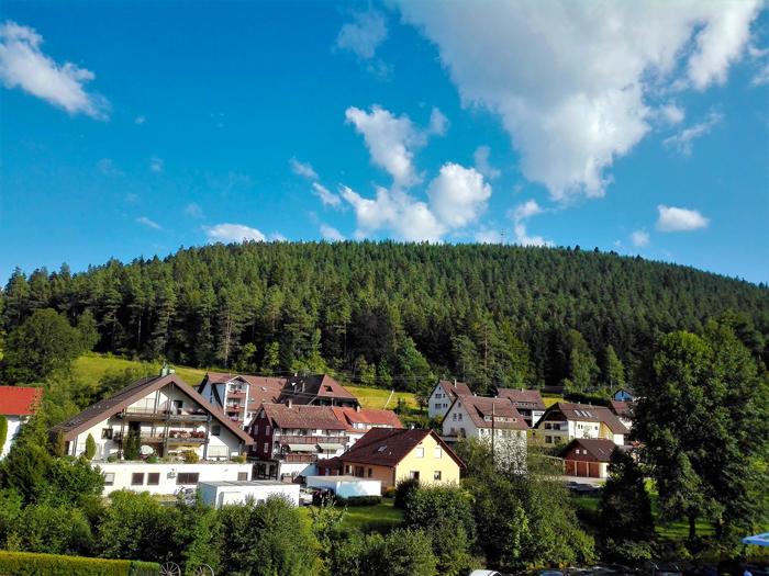 Enzkloesterle-Selva-Negra-don-viajon-turismo-rural-recreativo-senderismo-valle-del-rio-Enz-Baden-Wurttemberg-Alemania