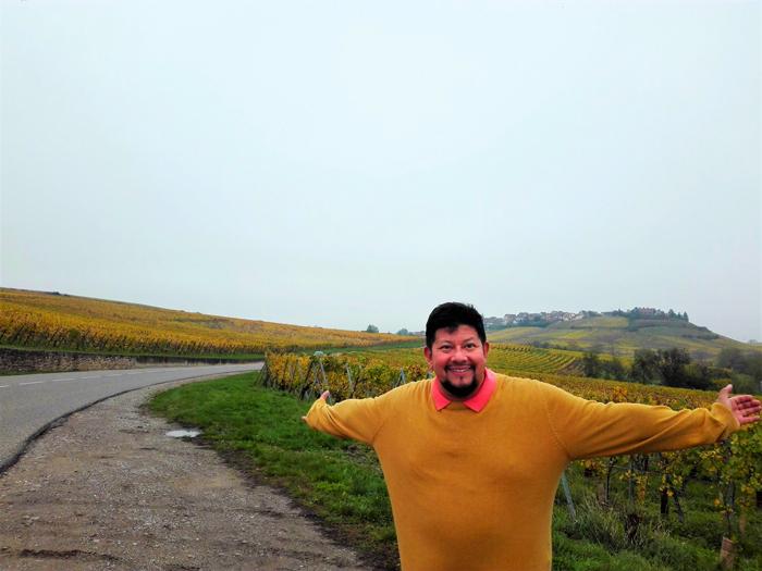 ruta-del-vino-alsaciano-don-viajon-turismo-etnologico-Alto-Rin-Gran-Este-Francia