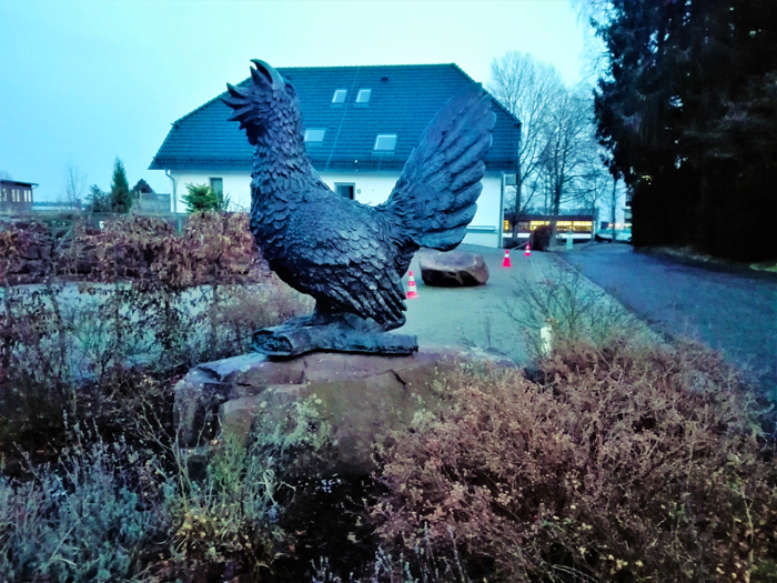 Bad-Wildbad-Urugallo-emblema-la-Selva-Negra-don-viajon-turismo-aventura-naturaleza-Alemania