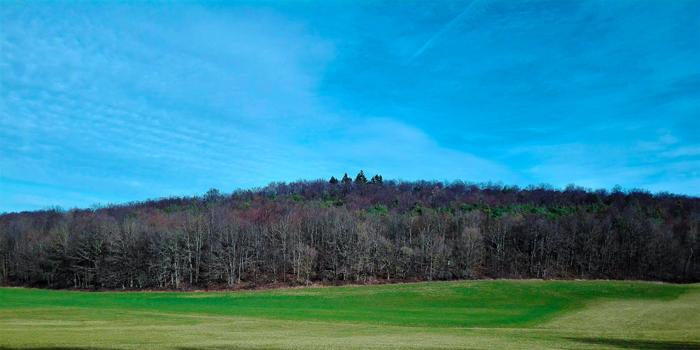 Birkenfeld-praderas-y-bosques-en-invierno-don-viajon-turismo-aventura-naturaleza-Alemania