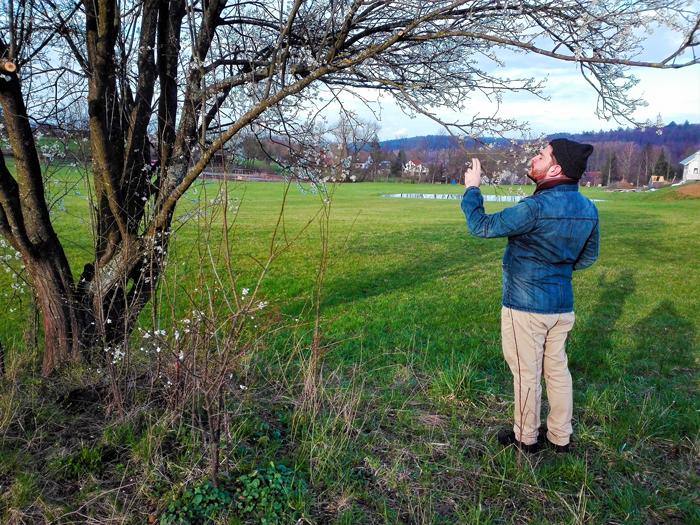 floracion-en-invierno-don-viajon-turismo-recreativo-senderismo-naturaleza-valle-del-Enz-Alemania