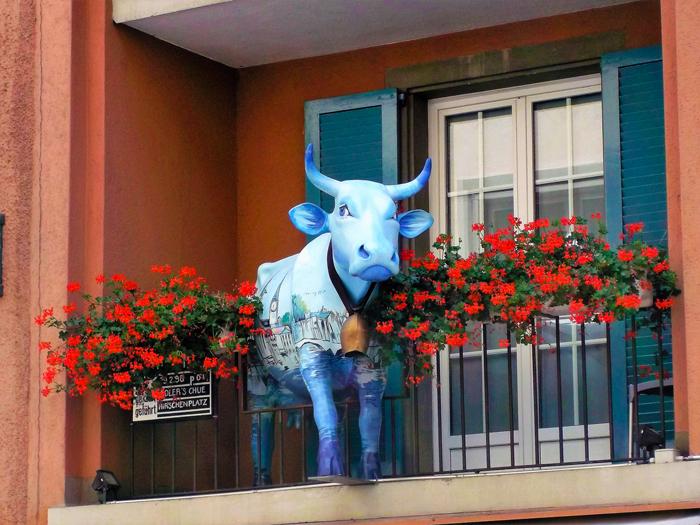 Zurich-la-vaca-en-el-balcon-don-viajon-turismo-urbano-recreativo-cultural-aventura-en-Suiza