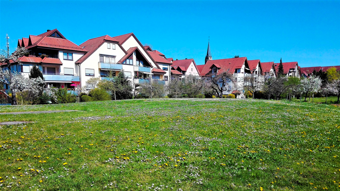 Bad-Rappenau-primavera-en-el-Neckar-don-viajon-turismo-recreativo-naturaleza-senderismo-Baden-Wurttemberg-Alemania