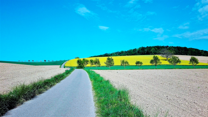 Duerrenbuechig-Walzbachtal-don-viajon-turismo-recreativo-rutas-distrito-Karlsruhe-campos-de-raps-naturaleza-Baden-Wurttemberg
