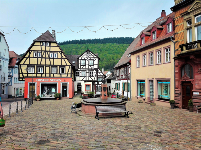 Neckargemuend-don-viajon-turismo-urbano-recreativo-distrito-Rin-Neckar-Baden-Wurttemberg-Alemania