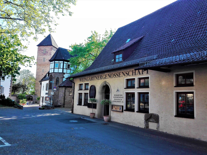 Neckarulm-casas-de-entramado-don-viaion-turismo-urbano-cultural-gastronomico-aventura-Baden-Wurttemberg-Alemania