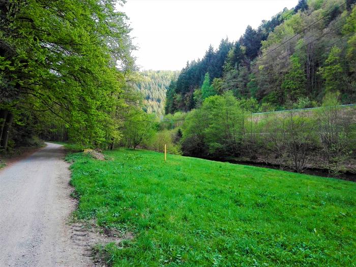 Pforzheim-valle-del-rio-Enz-don-viajon-turismo-urbano-primavera-senderismo-Baden-Wurttemberg-Alemania