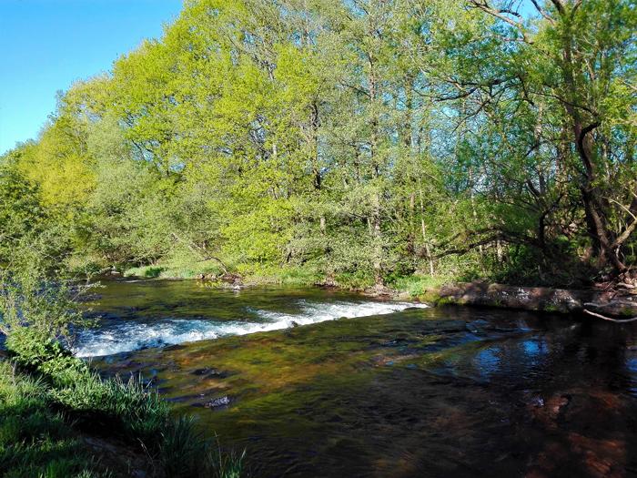 Valle-del-rio-Enz-don-viajon-turismo-recreativo-aventura-rutas-senderismo-Pforzheim-Selva-Negra-Alemania