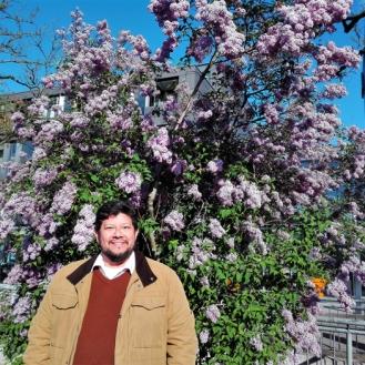 Ettlingen-ciudad-floral-primavera-don-viajon-turismo-urbano-cultural-recreativo-senderismo-Baden-Wurttemberg-Alemania